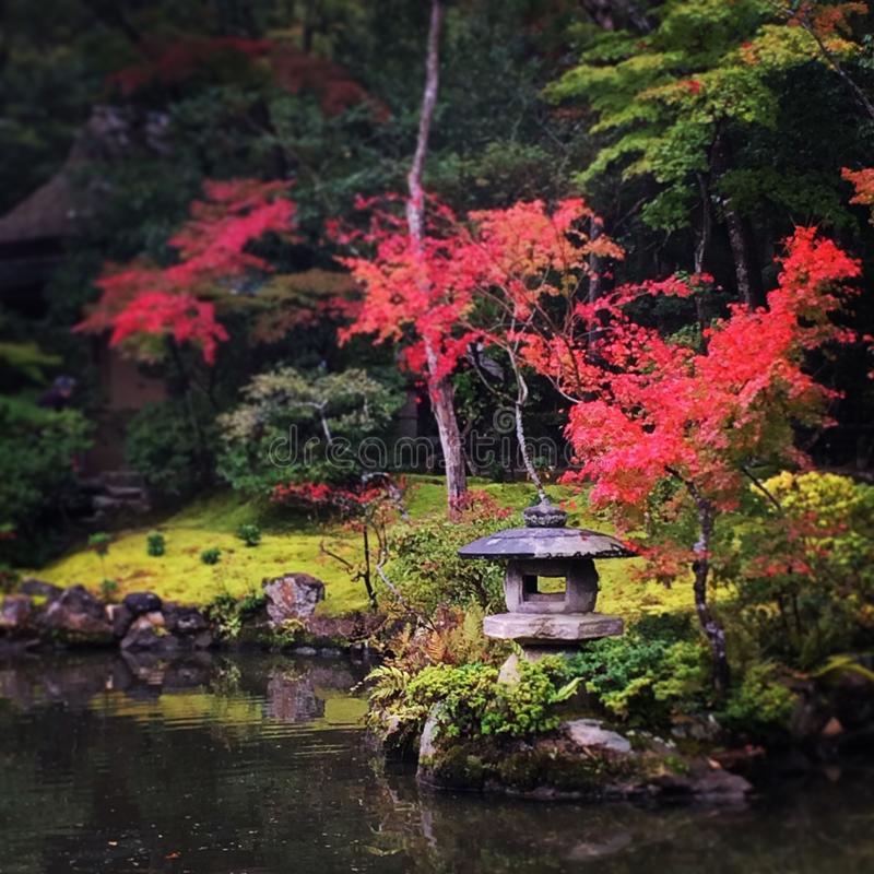 庭院日本人禅宗 库存照片