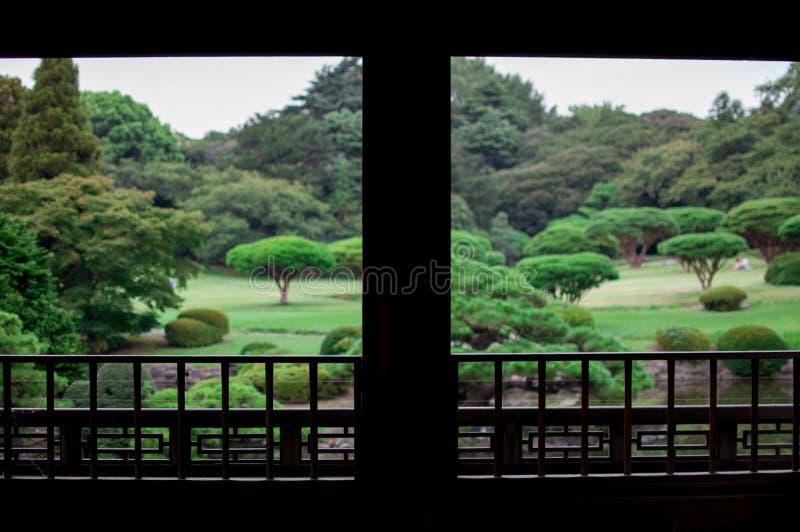 庭院日语 秋天是非常日本的五颜六色的季节 京都的秋季是非常看见日本的好计时 世界是大en 免版税库存图片