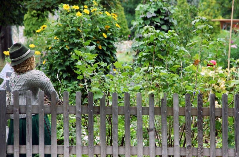 庭院有机蔬菜 免版税库存照片