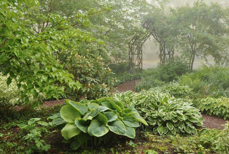 庭院有薄雾的树荫格子 库存照片