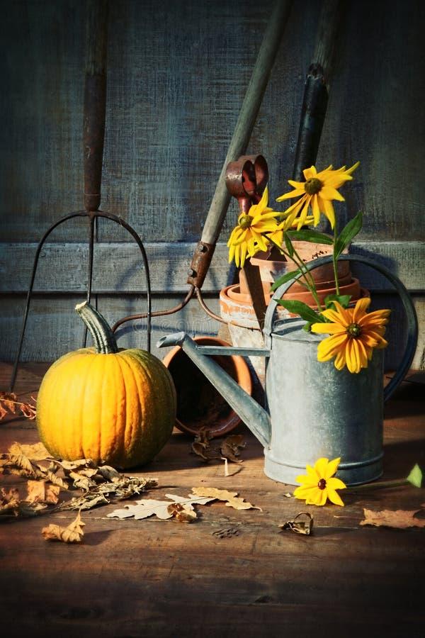 庭院流洒了与工具、南瓜和花 库存图片