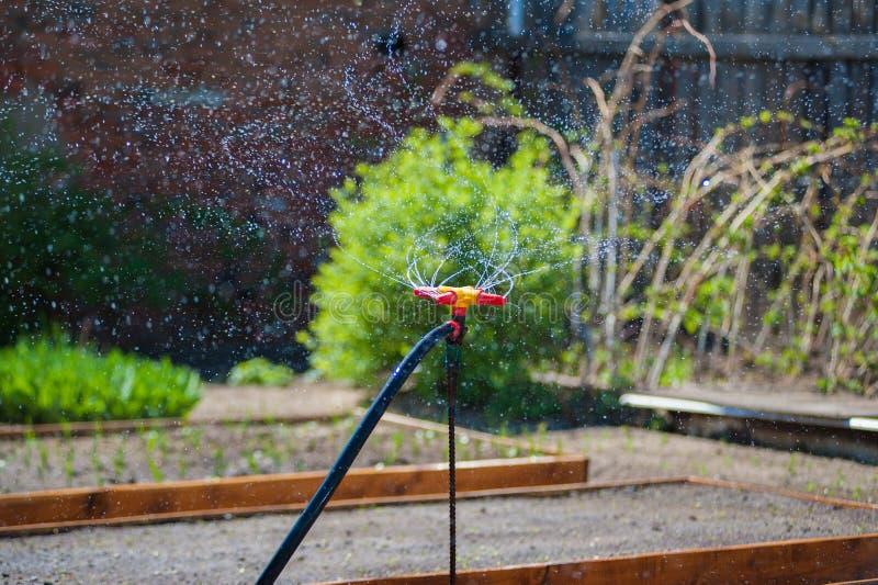 庭院浇灌的喷泉 图库摄影