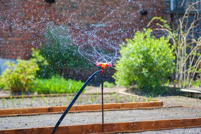 庭院浇灌的喷泉 免版税库存照片