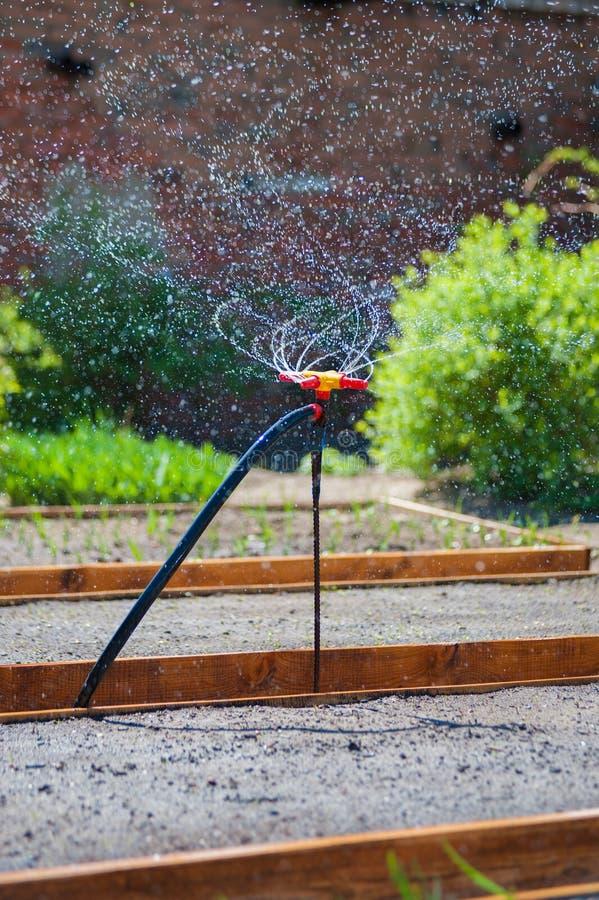 庭院浇灌的喷泉 免版税库存图片