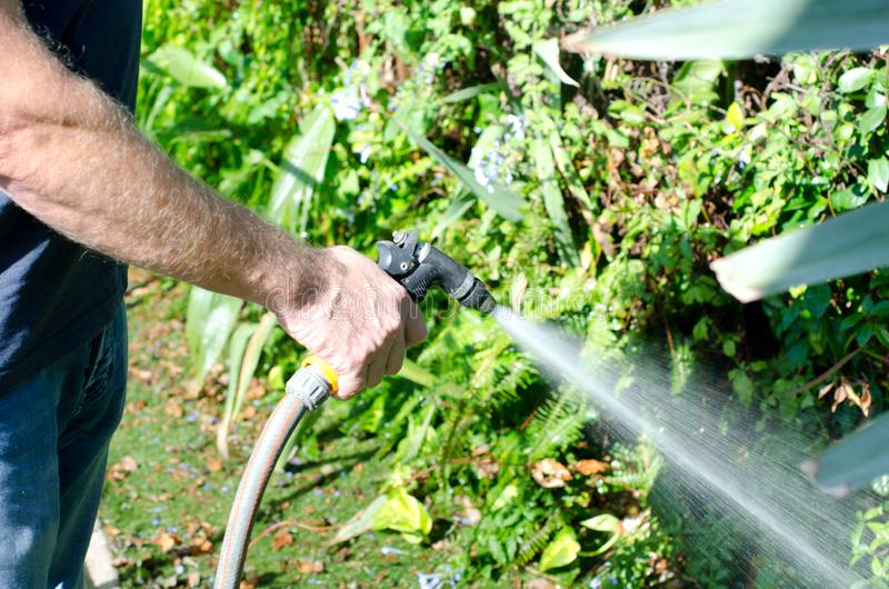 庭院浇灌 库存照片