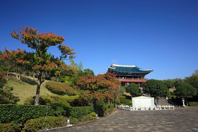 庭院海岛火山的济州 免版税图库摄影
