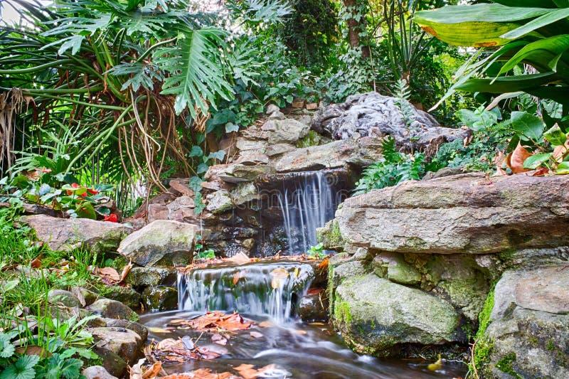 瀑布和小河在庭院池塘图片