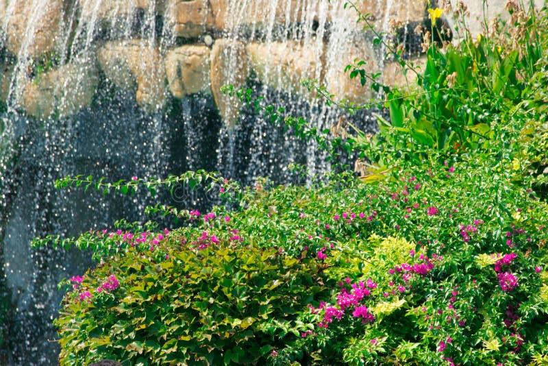 庭院瀑布 免版税库存图片