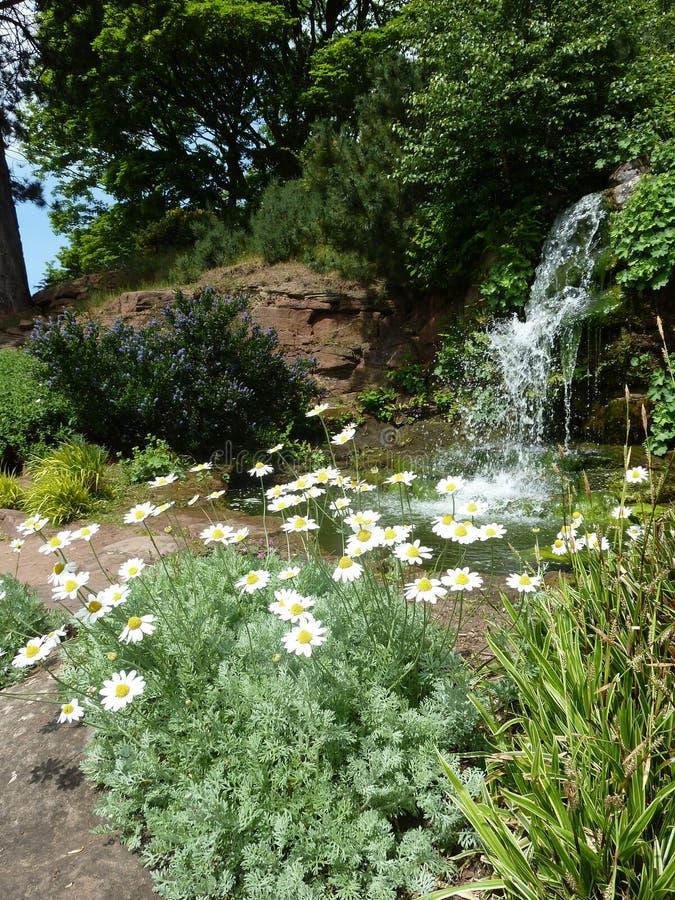 Download 庭院瀑布 库存照片. 图片 包括有 绿色, 本质, 春天, 雏菊, 瀑布, 庭院, 路径, 池塘, 结构树 - 72358596
