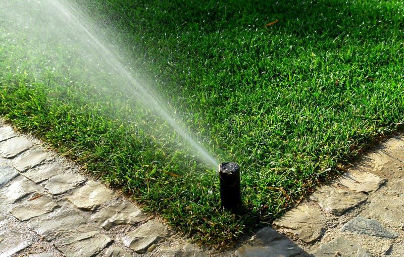 庭院灌溉系统 库存图片