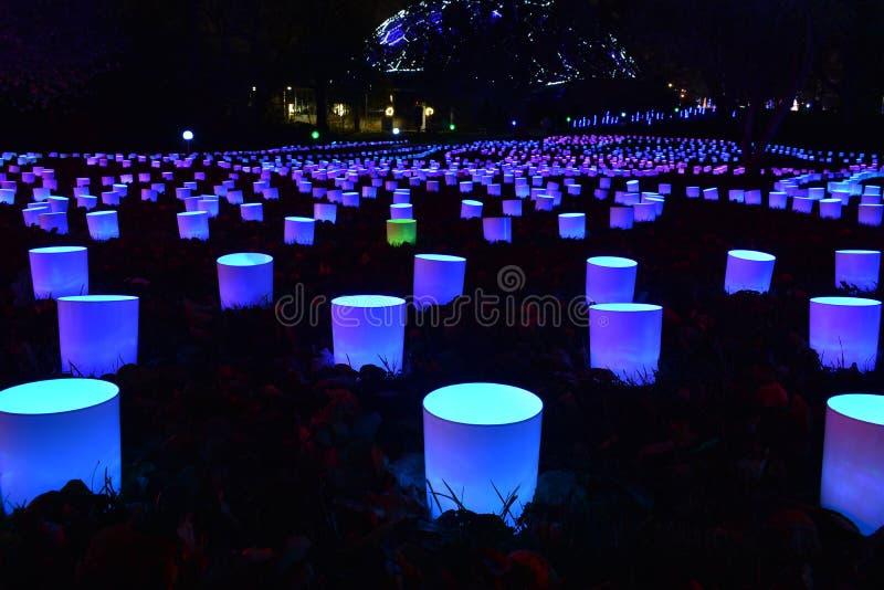 庭院焕发光在密苏里植物园里 免版税库存图片