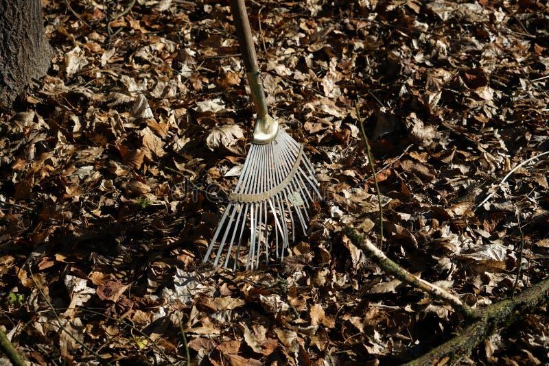 庭院犁耙是特别设立的在秋叶叶子 免版税库存照片