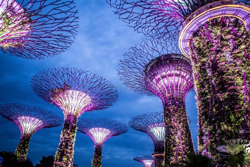 庭院狂文展示,由海湾的庭院,新加坡 免版税库存图片