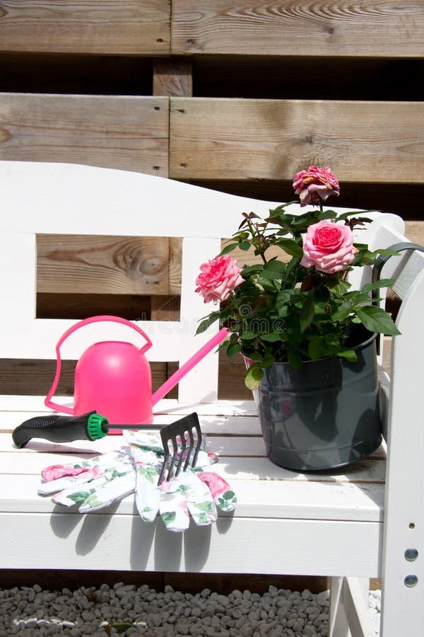 庭院玫瑰工具 图库摄影