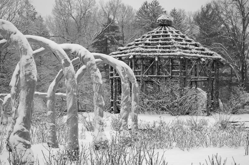 庭院玫瑰色冬天 免版税库存图片