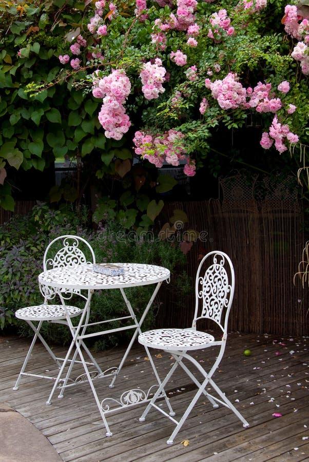 庭院玫瑰表 库存图片