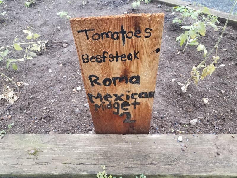 庭院用蕃茄、牛排、罗马和墨西哥侏儒和标志 免版税库存图片