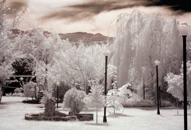 庭院白色 免版税库存照片