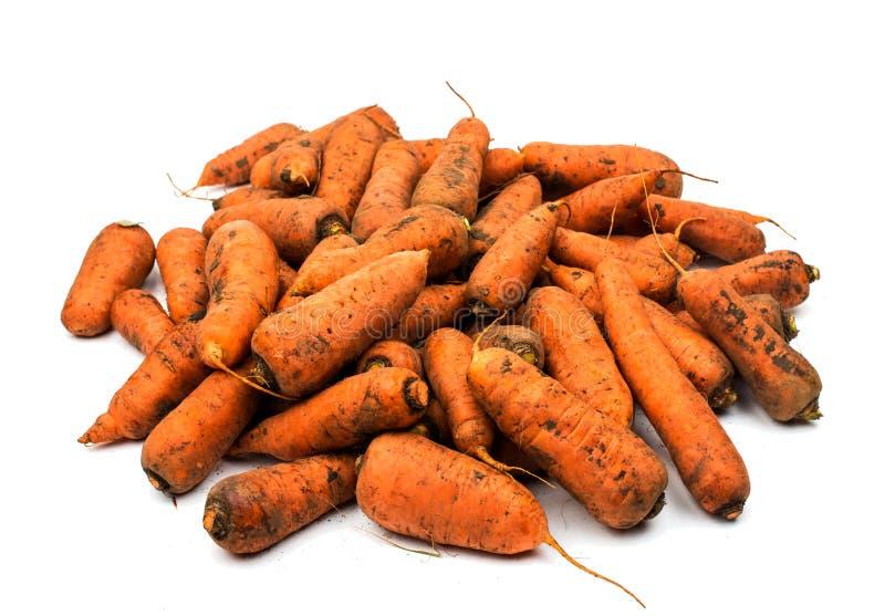 从庭院的新鲜的被收获的红萝卜 免版税库存图片