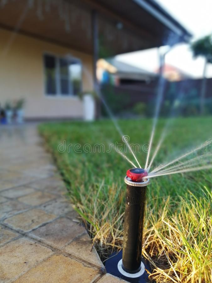 庭院的自动灌溉系统在边路附近 免版税库存照片