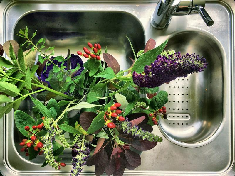 从庭院的花束花 免版税图库摄影
