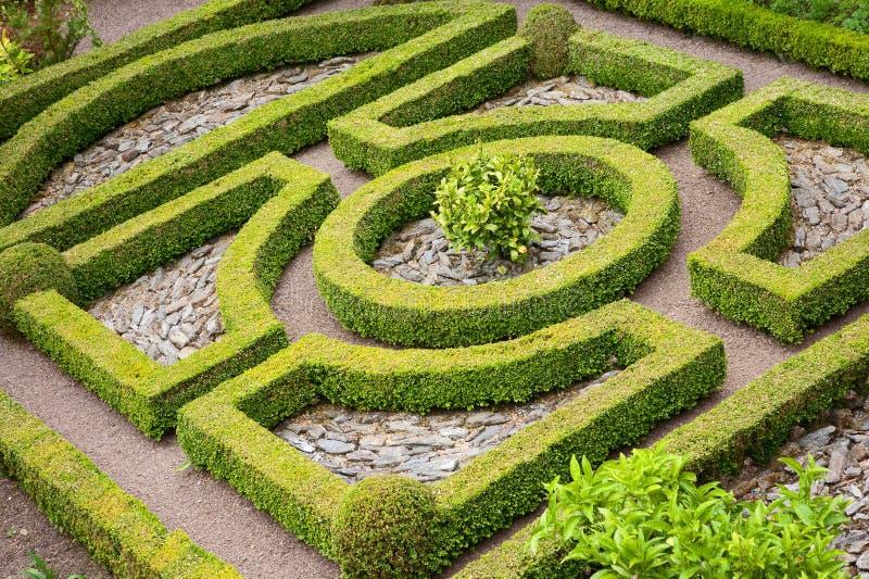 庭院结修剪的花园 图库摄影