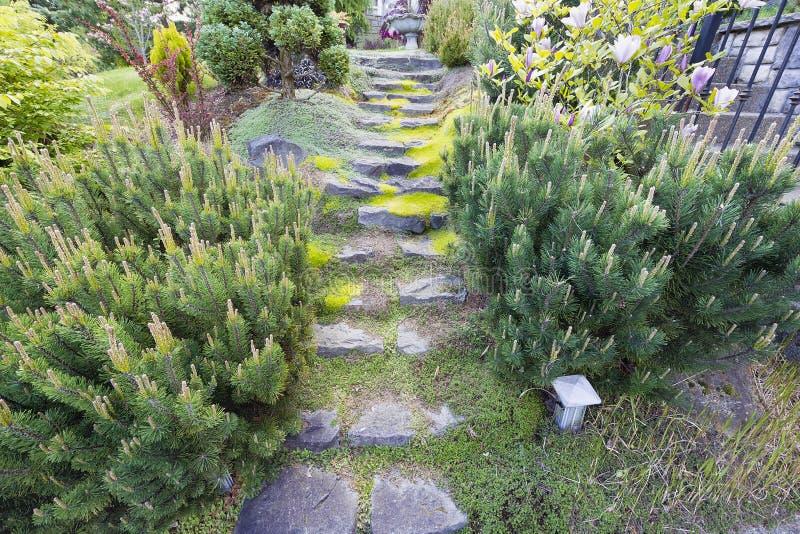 庭院花岗岩自然步骤石头 免版税库存图片