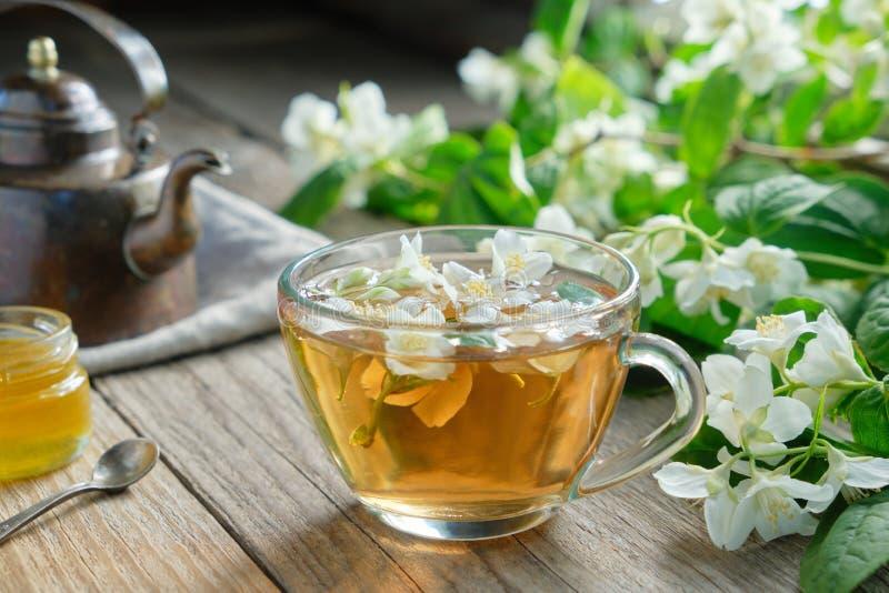 庭院茉莉花花、健康清凉茶杯子、蜂蜜瓶子和葡萄酒铜茶壶 免版税库存图片