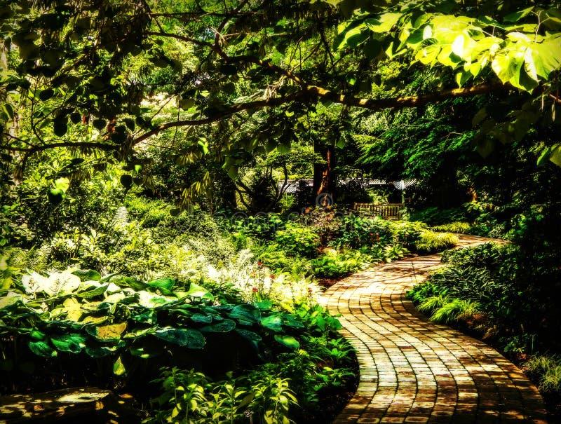绕庭院道路 库存图片