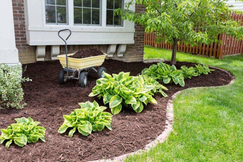 庭院维护在做覆盖树根的春天 免版税图库摄影