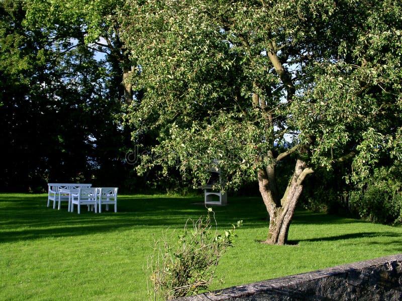 Download 庭院 库存图片. 图片 包括有 放松, 结构树, 家具, 家庭, 部分, 庭院, 绿色, 静止, 椅子, 申请人 - 55955