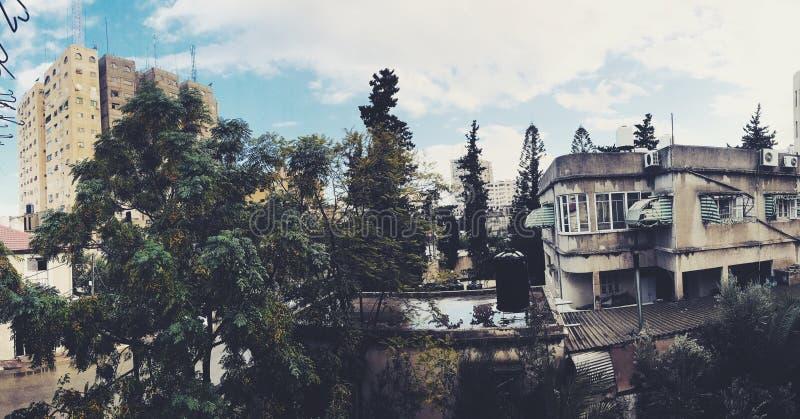 庭院 免版税图库摄影