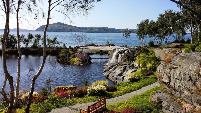 庭院flor&fjære在挪威,斯塔万格 免版税图库摄影