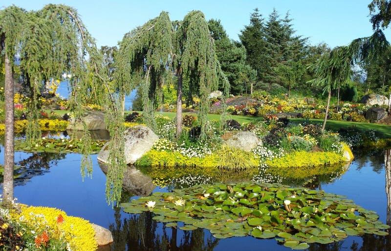 庭院flor&fjære在挪威,斯塔万格 免版税库存图片