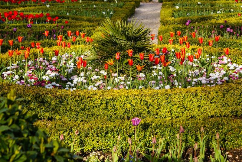 庭院Muckross基拉尼国家公园,爱尔兰 库存图片
