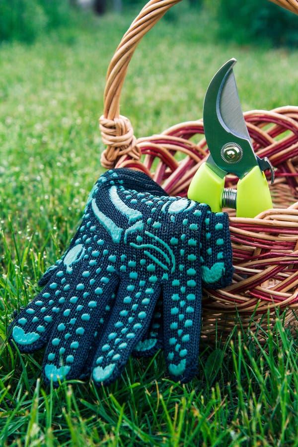 庭院pruner和手套与柳条筐在绿草 库存图片