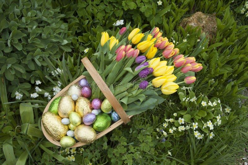 庭院trug fÃ复活节彩蛋和郁金香¼ ll  库存照片