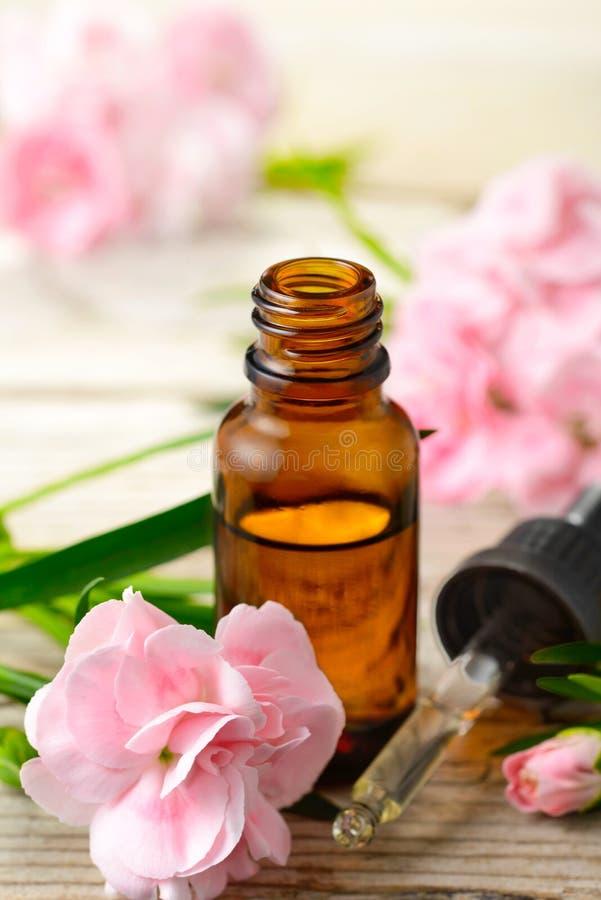 康乃馨绝对精油和桃红色花在木桌上 免版税图库摄影