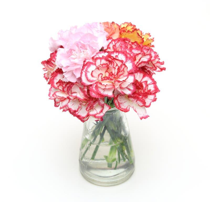 康乃馨花束在一个玻璃瓶的 免版税库存照片