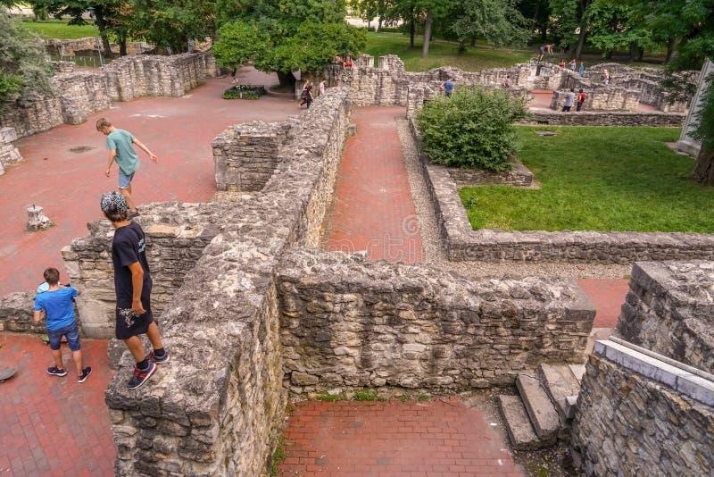 延命菊海岛的罗马废墟访客 库存图片