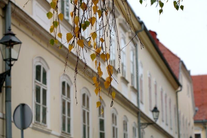 建筑学在萨格勒布,克罗地亚 免版税库存图片