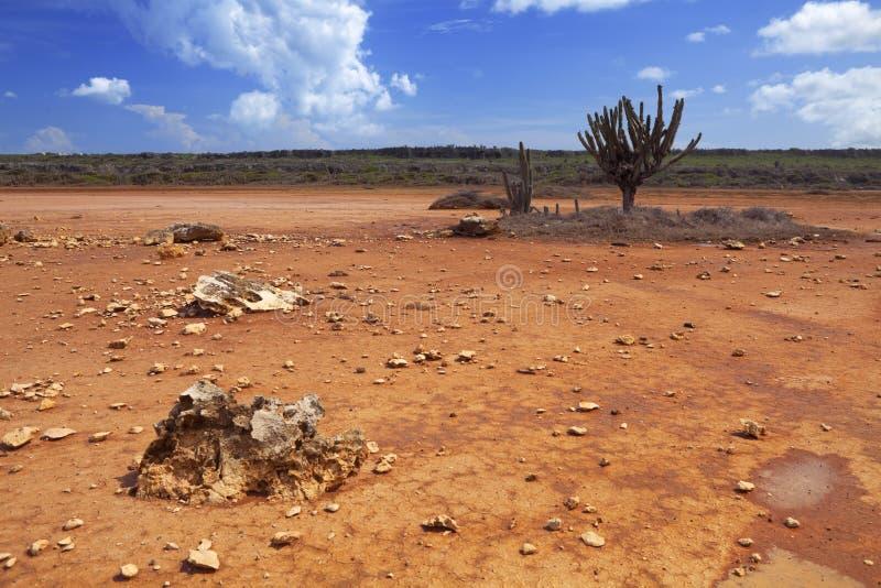 离开在Hato平原的风景, Curaçao 图库摄影