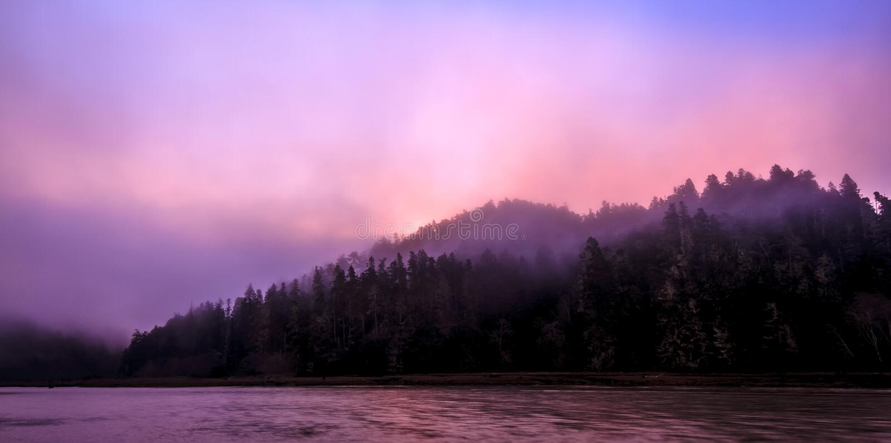 开始的日出烧掉雾 库存照片