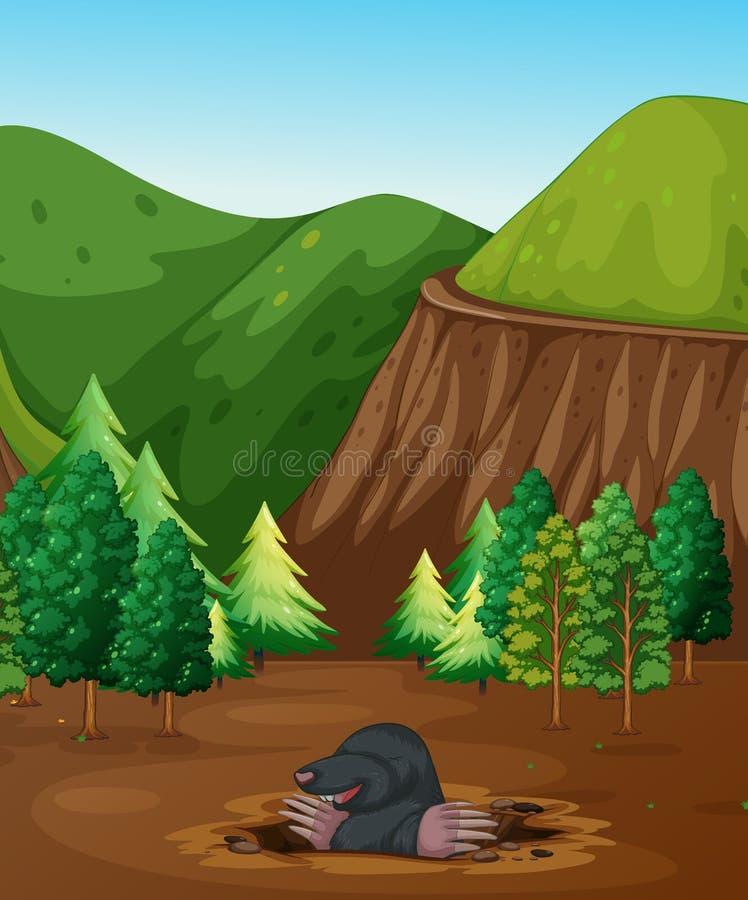 开掘地面的痣 向量例证