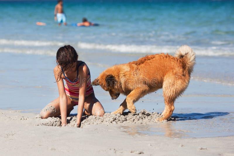 开掘漏洞的女孩和狗在海滩 免版税图库摄影