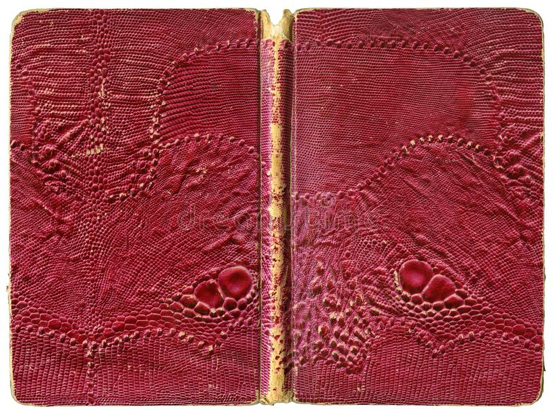 开放书或笔记本-有人为蜥蜴皮革的被撕碎的葡萄酒盖子 库存图片