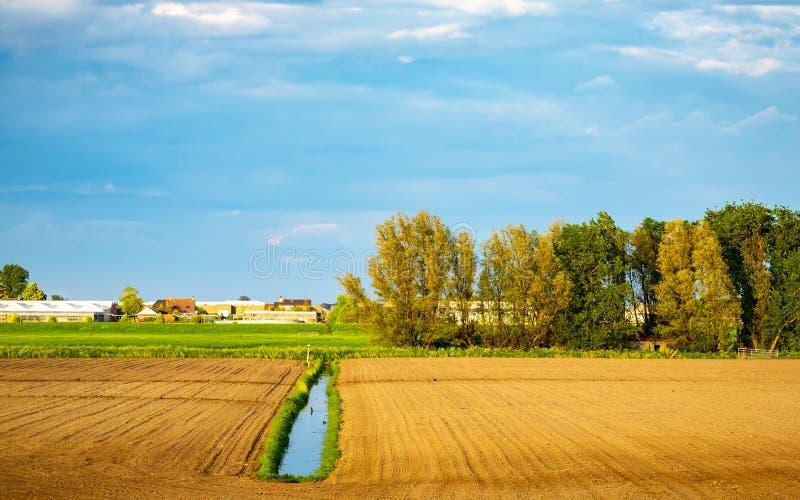 开放农业草土地在荷兰 免版税库存照片