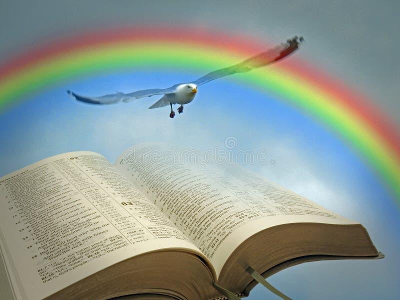 开放圣经和平彩虹鸟教典天堂上帝语言 免版税库存图片