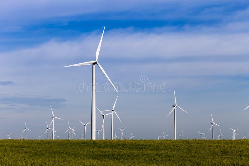 开放大草原的风力场 库存图片