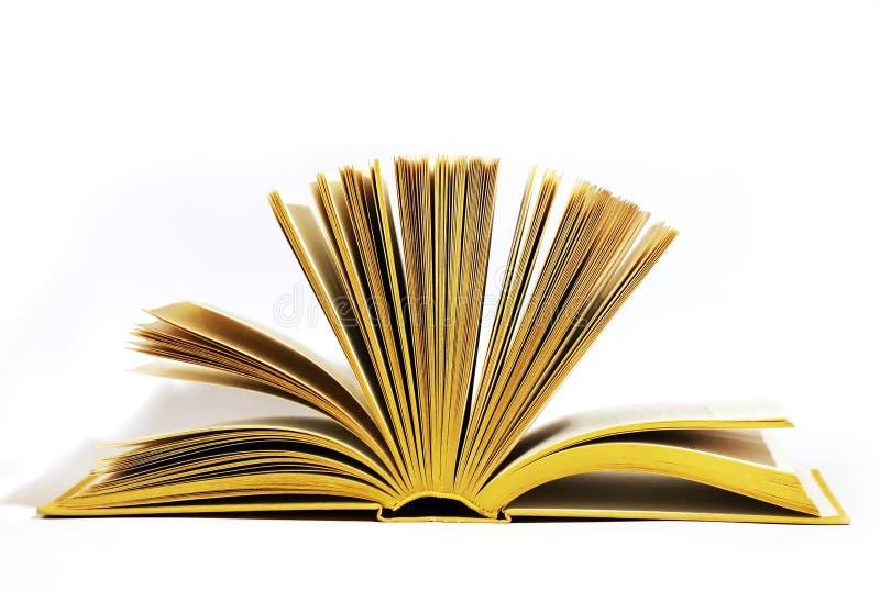 开放的书 库存照片